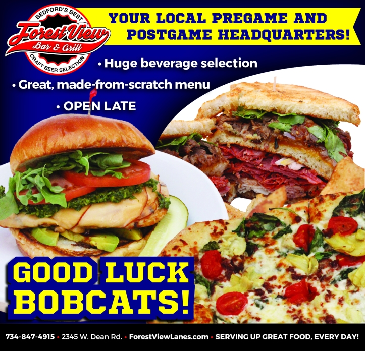 Forest View Bobcat ad